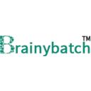 Brainybatch